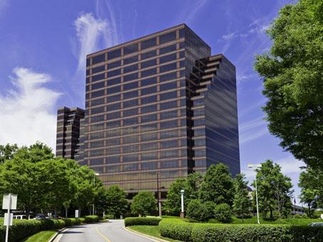 Blue Crane Tech Home Office